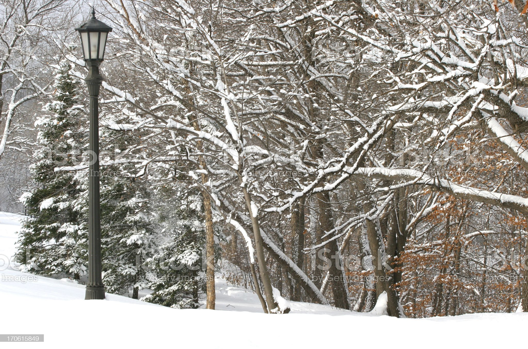 Wintery scene featuring lamppost. royalty-free stock photo