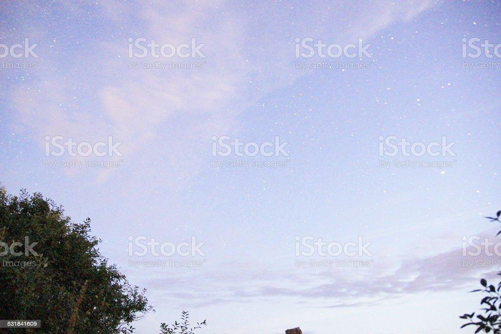 Wintery, stary sky! stock photo