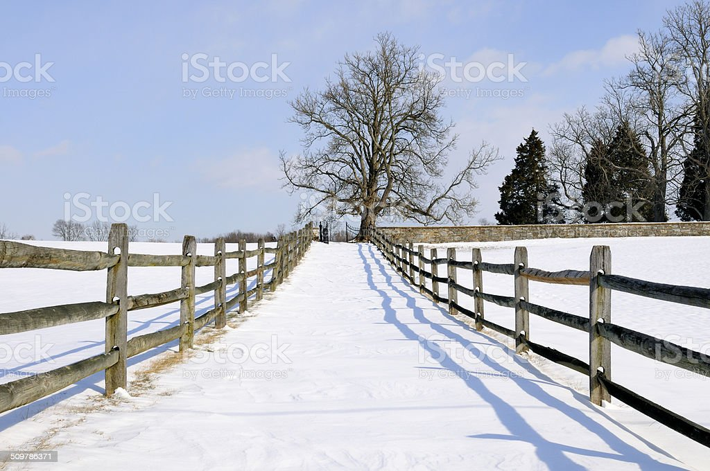 Wintry Countryside stock photo