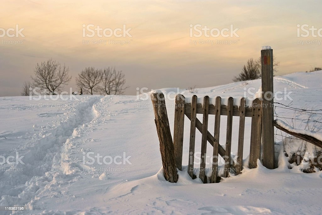 wintry countryside scene at dusk royalty-free stock photo