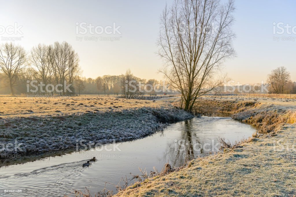 Wintry landscape in early morning sunlight stock photo