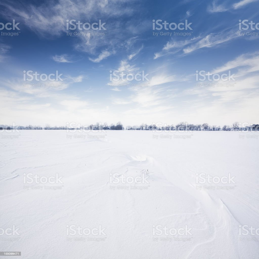 Wintry Landscape royalty-free stock photo