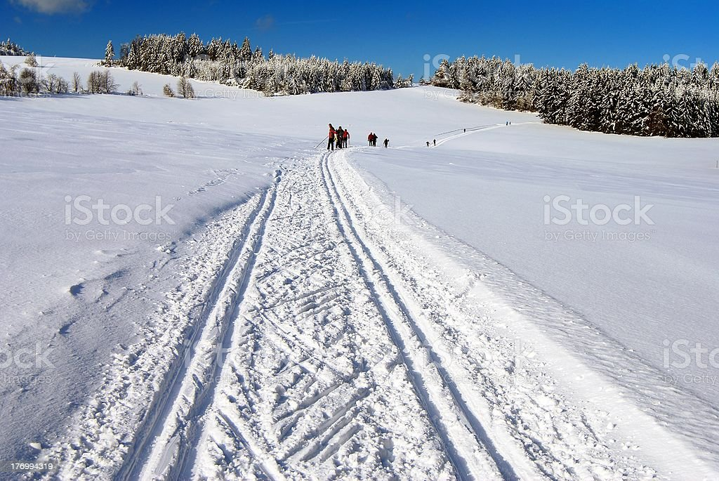 Paysage polaire paysage avec modifié de manière pratique du ski de fond photo libre de droits