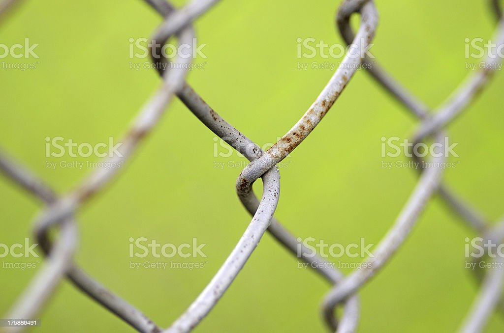 wire gauze stock photo