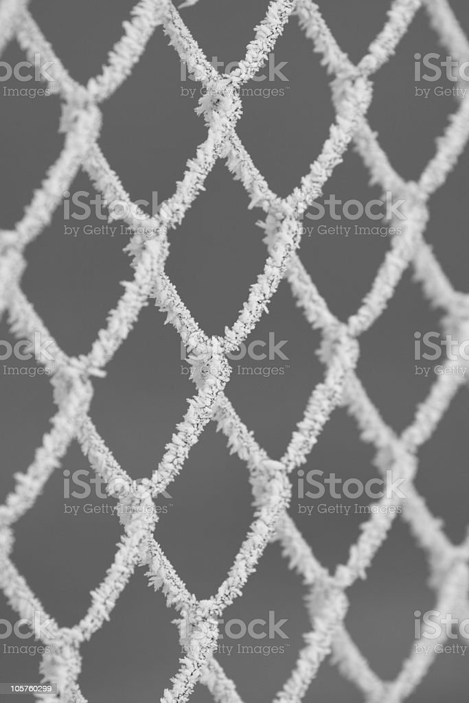Wire Iced Net Closeup, Full Frame Image royalty-free stock photo