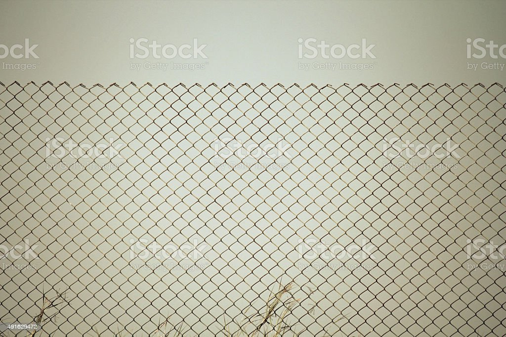 Wire mesh fencing surrounded by wild grass stock photo