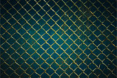 wire mesh steel with green grass background.