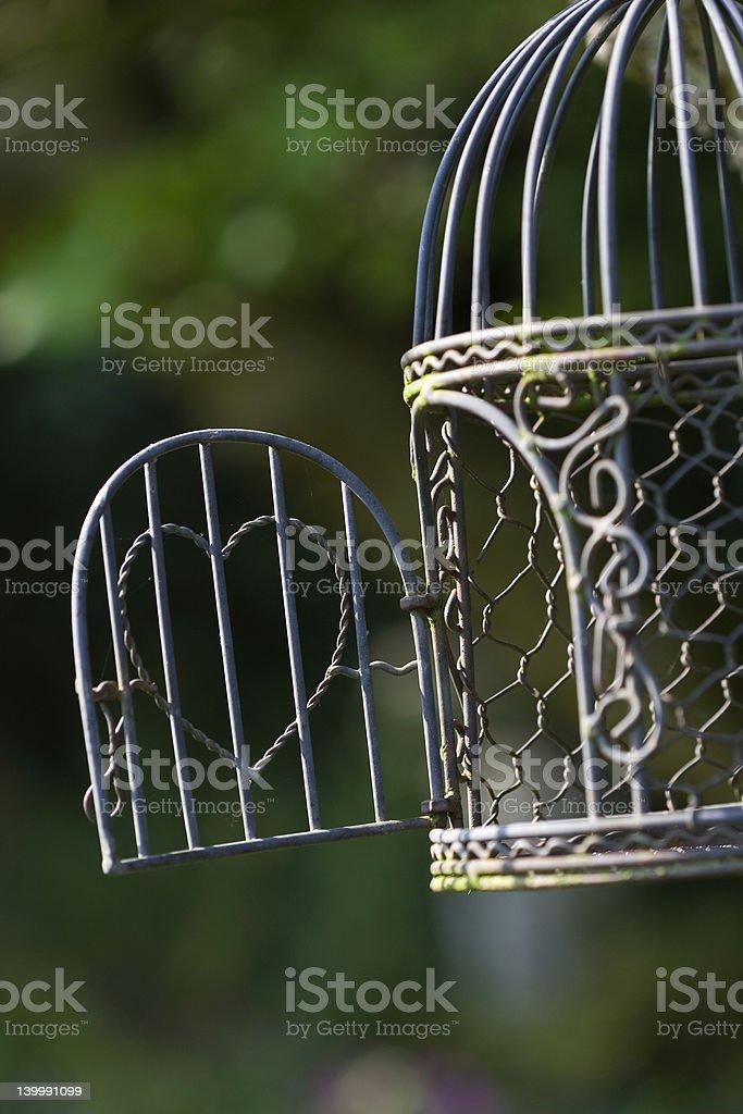 Wireframe birdcage royalty-free stock photo