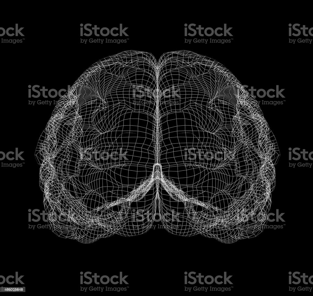 Wire-frame of brain with occipital region stock photo
