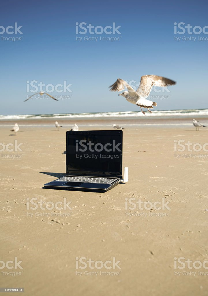 wireless laptop computer on  beach surfing the net royalty-free stock photo