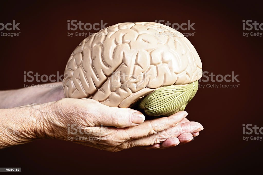 Wisdom or loss of mental powers? Old hands hold brain royalty-free stock photo