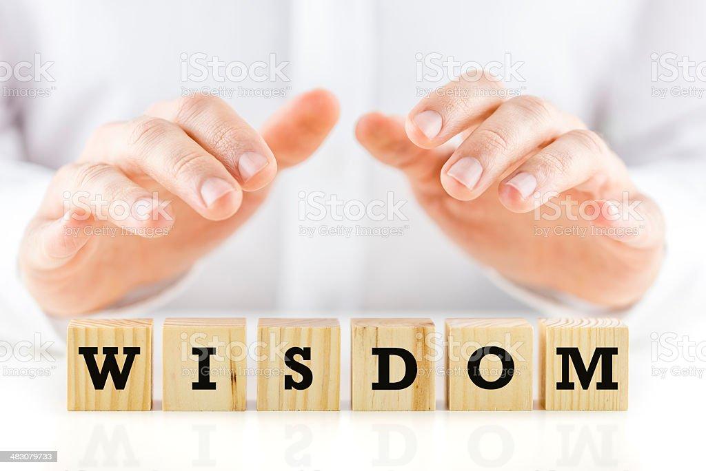Wisdom royalty-free stock photo