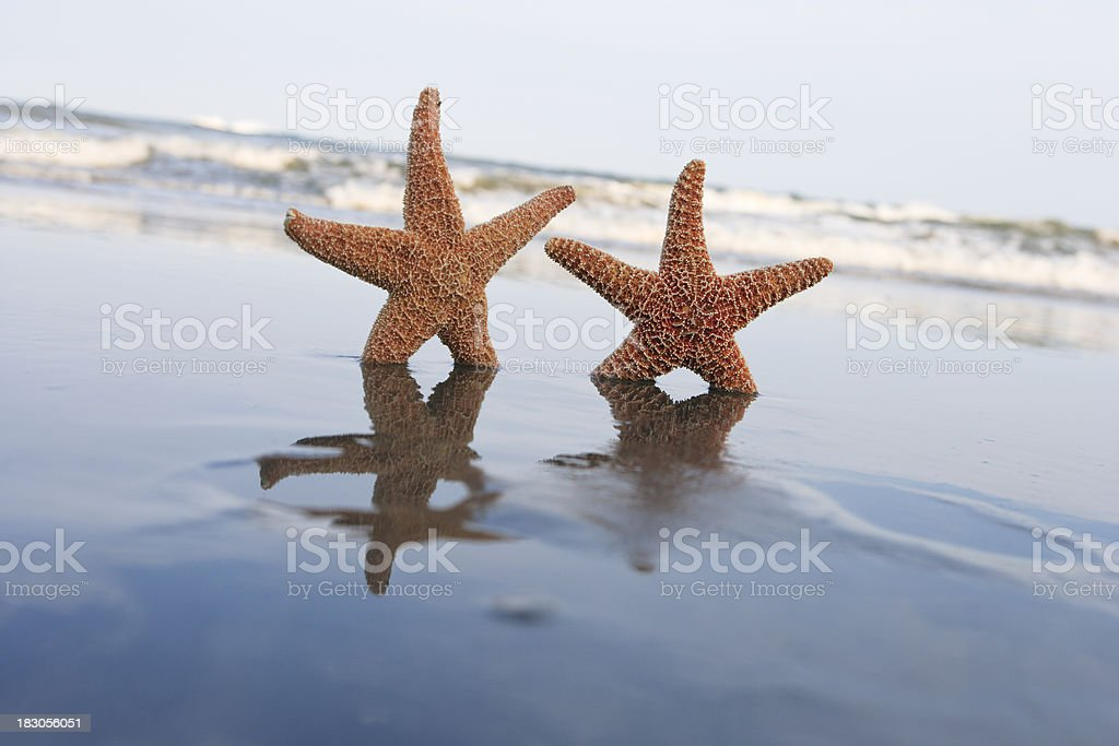 Wish you were here at the beach royalty-free stock photo