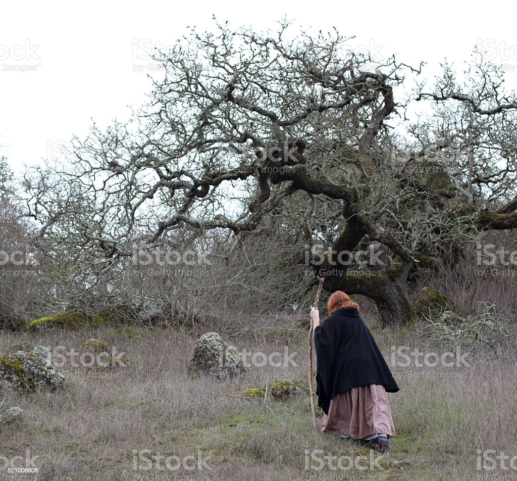 Witch in Woods stock photo