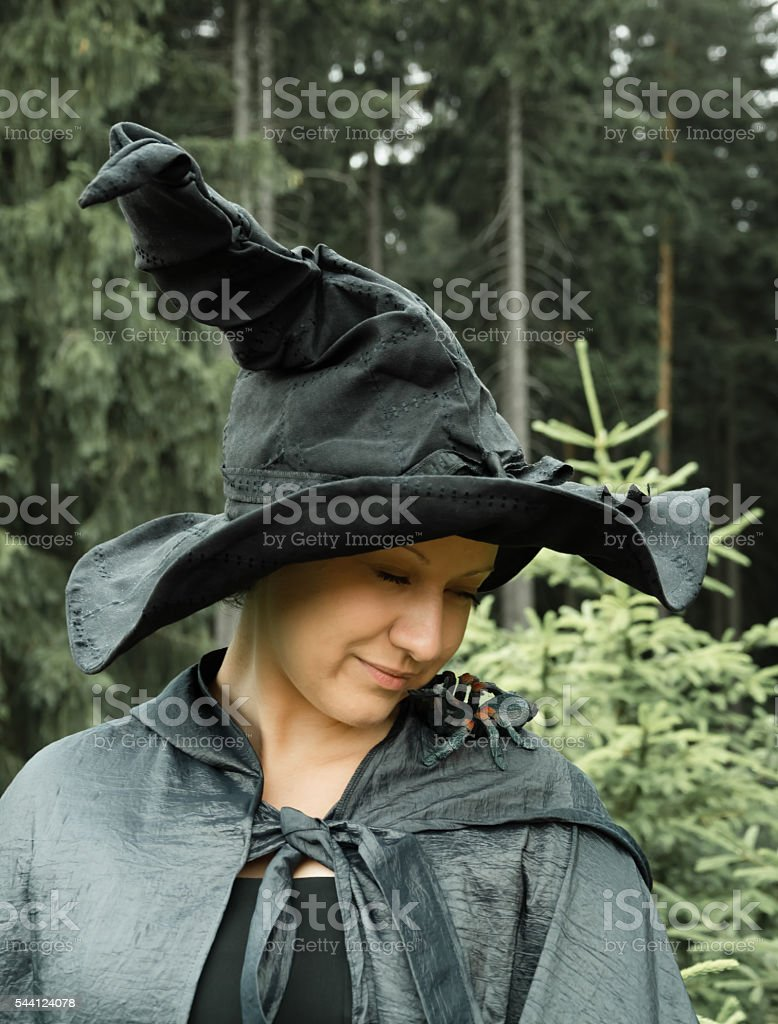 witch with spider stock photo