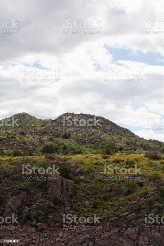 Witchita Mountains stock photo