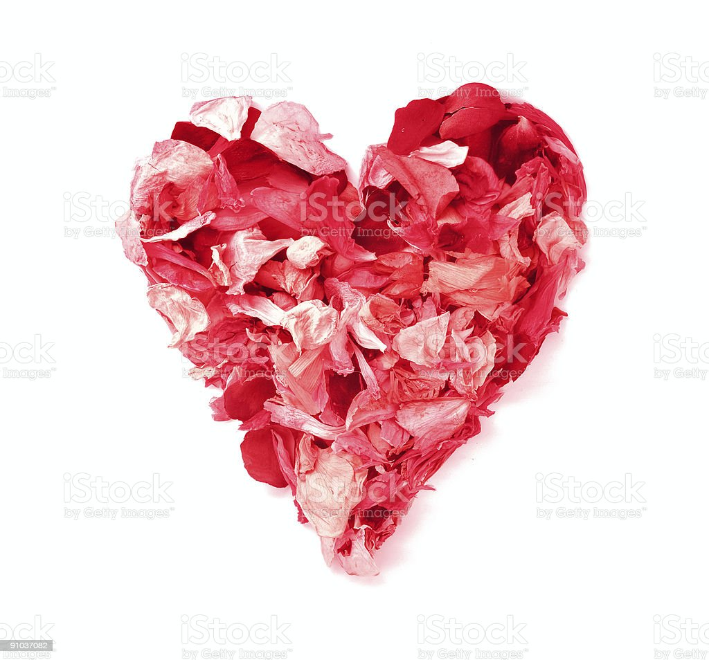 HEART with flower petals stock photo