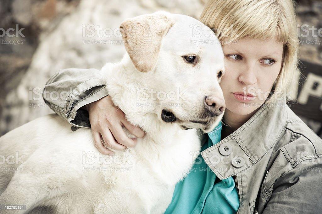 with my labrador stock photo