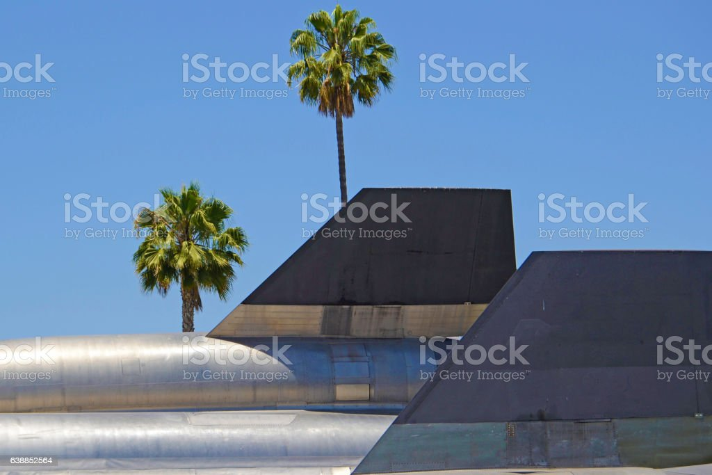 SR-71 with Palm Trees stock photo