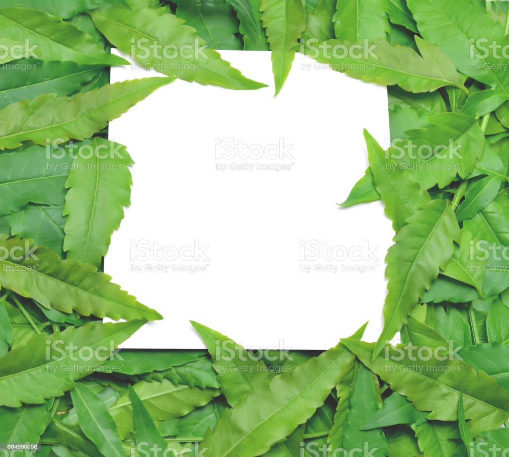 With paper card note is surrounded by leaves. stock photo