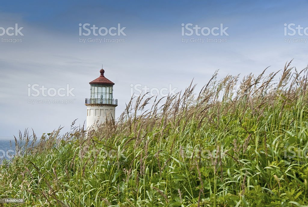 Grassy Meadow and Lighthouse at North Head stock photo