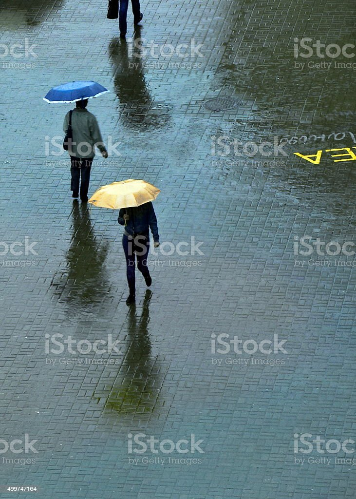 With umbrellas walks in the rain on the pavement stock photo