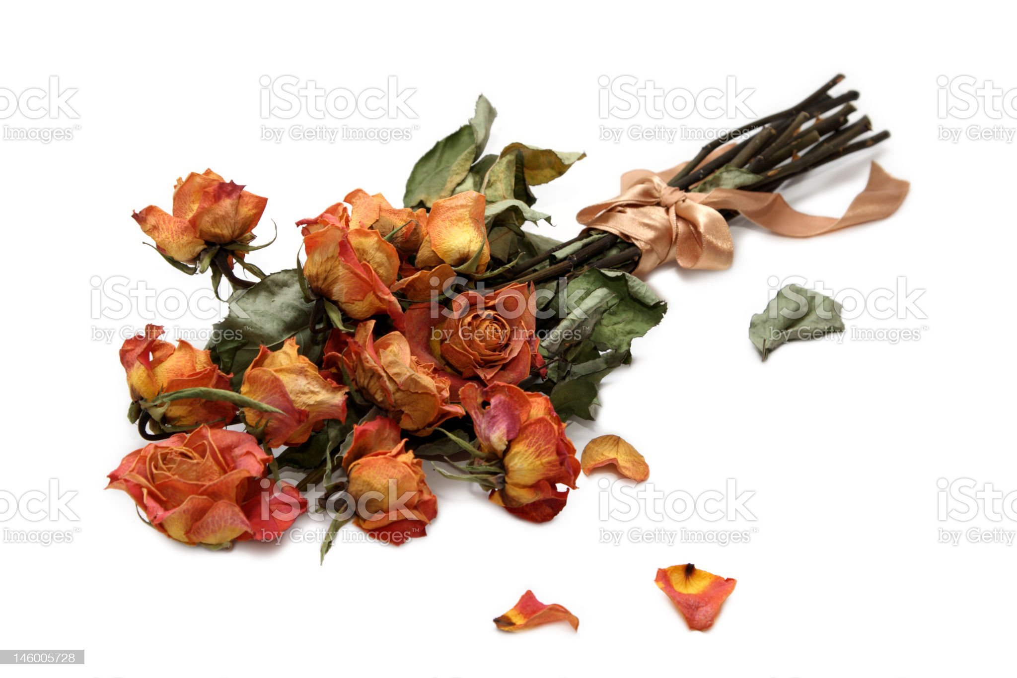 Withered bouquet royalty-free stock photo