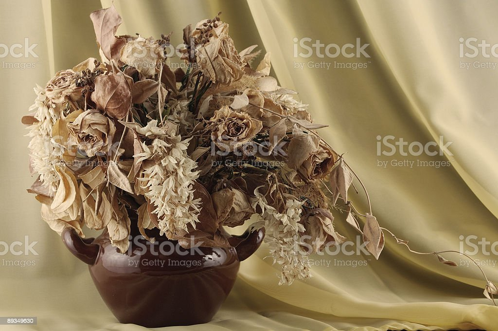 Withered flowers royalty-free stock photo