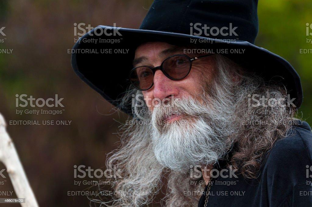 Wizard in Christmas Parade. stock photo