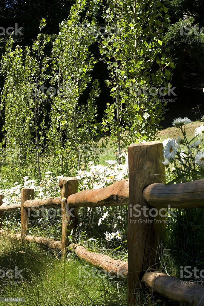 wodden fence royalty-free stock photo