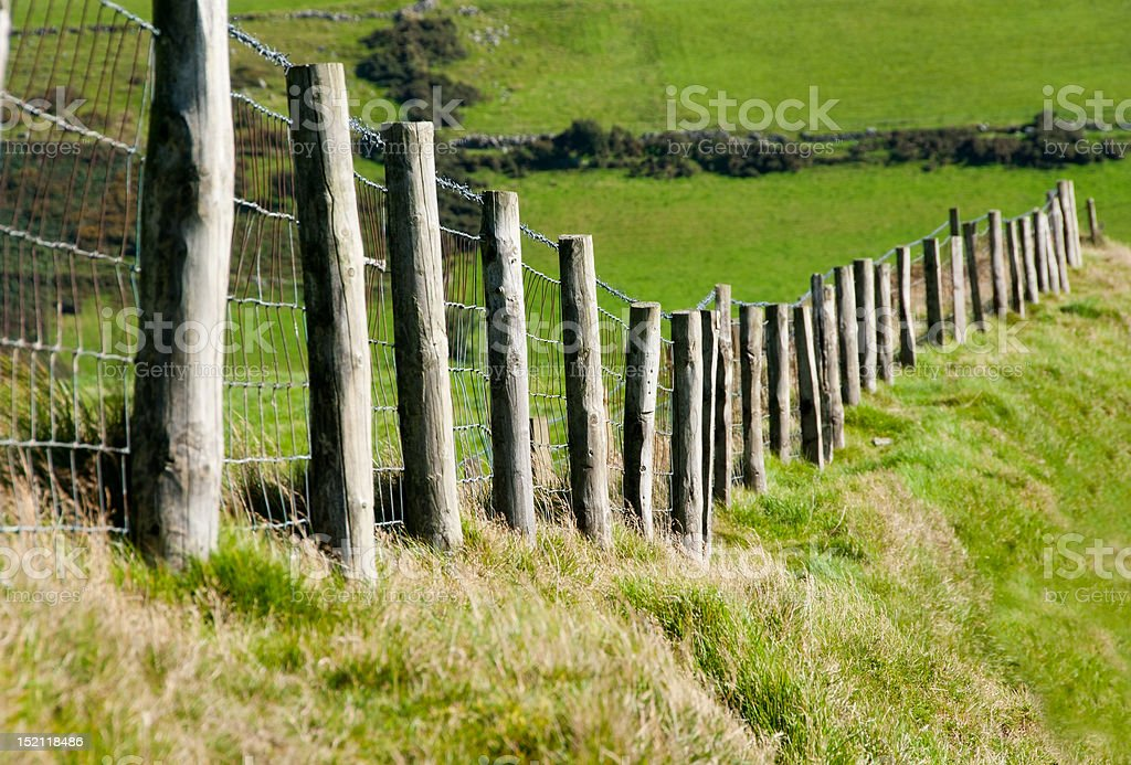 Wodden Posts with Metal Wire Fence in Cattle Field stock photo
