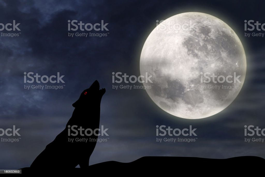 Wolf howling at full moon stock photo
