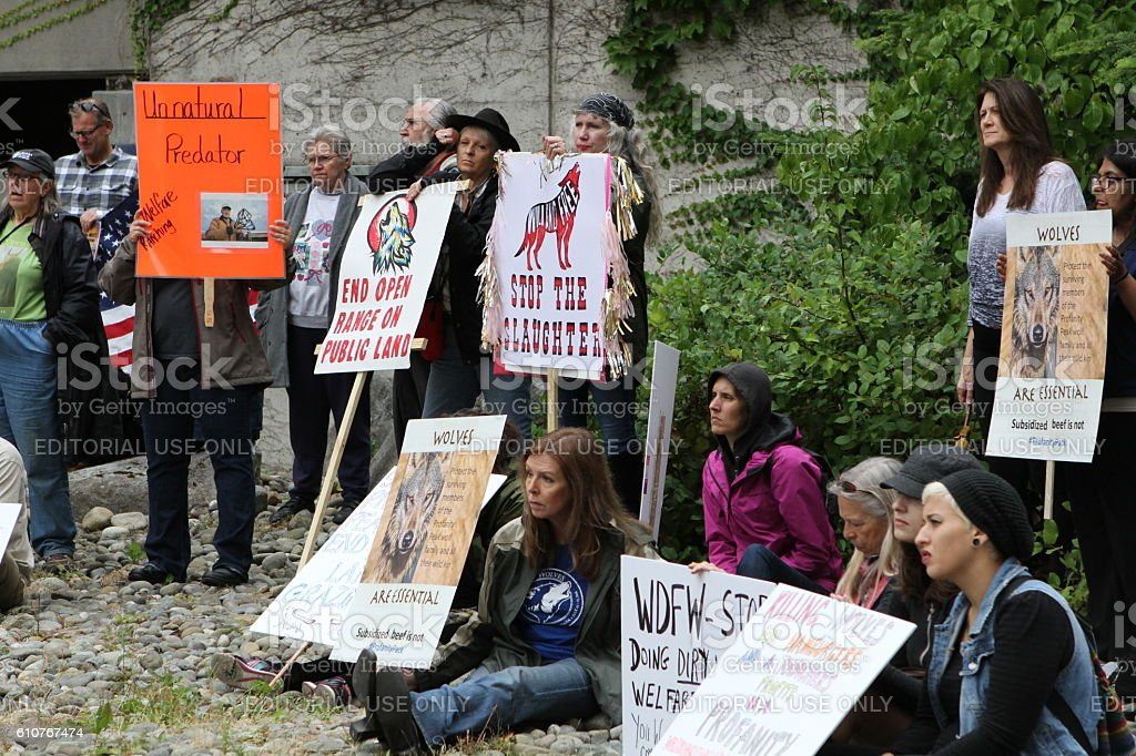 Wolf Pack Protesters stock photo