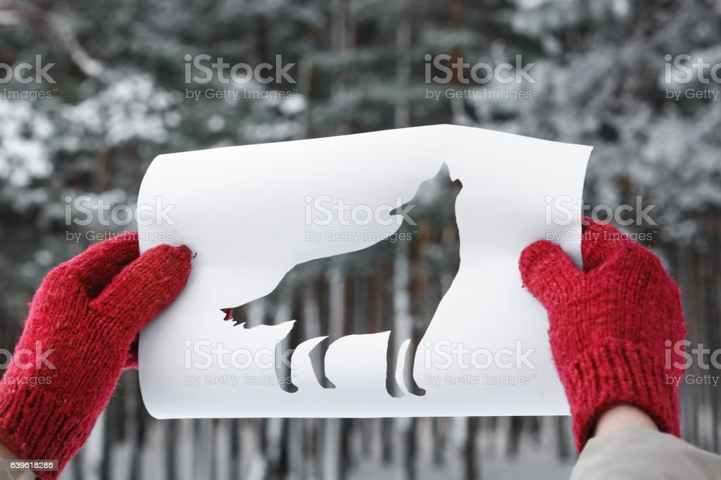 Wolf Shape Cut Out from Y Paper against Winter Forest stock photo