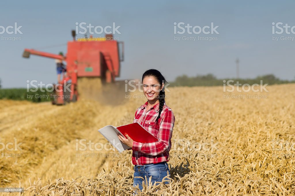Woman agronomist in wheat field stock photo
