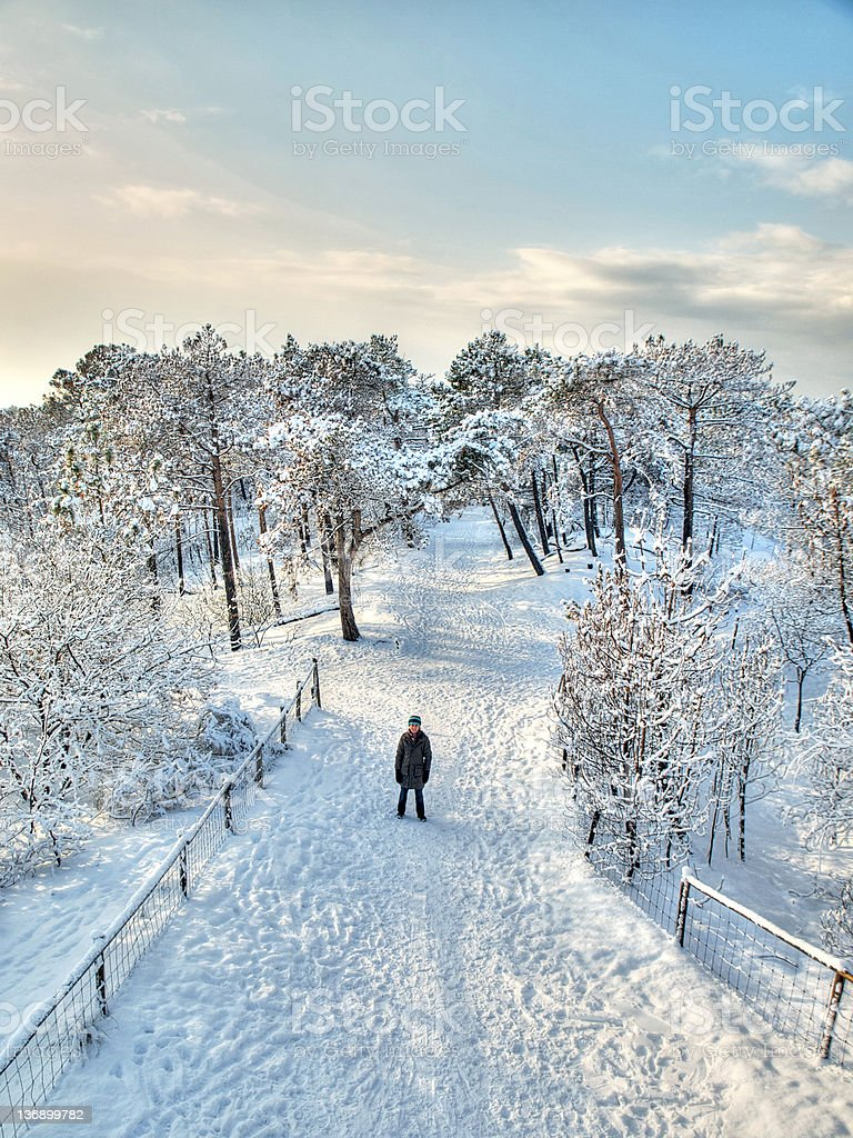 Woman all alone in a winter forest stock photo
