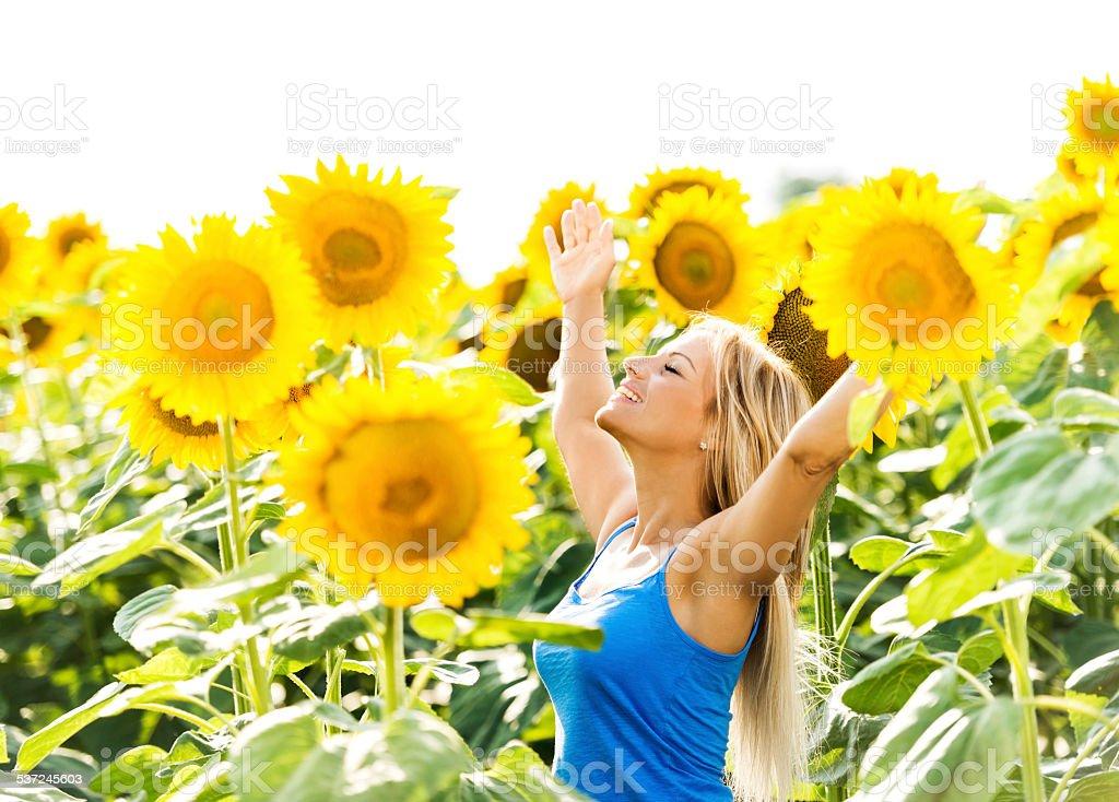 Woman among sunflowers. stock photo