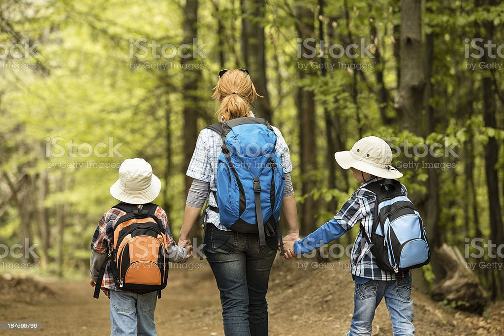 Woman and children walking in the forest royalty-free stock photo