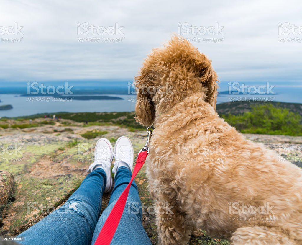 Woman and Dog enjoy Mountaintop View stock photo