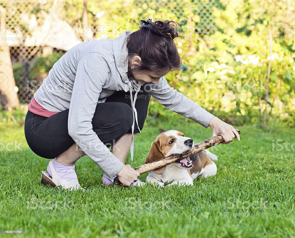 woman and dog on a lawn royalty-free stock photo