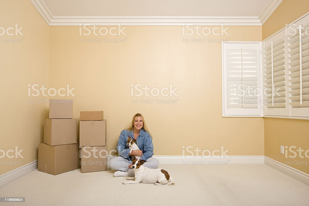 Woman and Dogs with Moving Boxes in Room on Floor stock photo