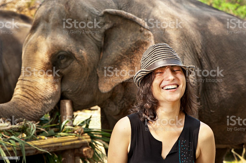 Woman and Elephants royalty-free stock photo