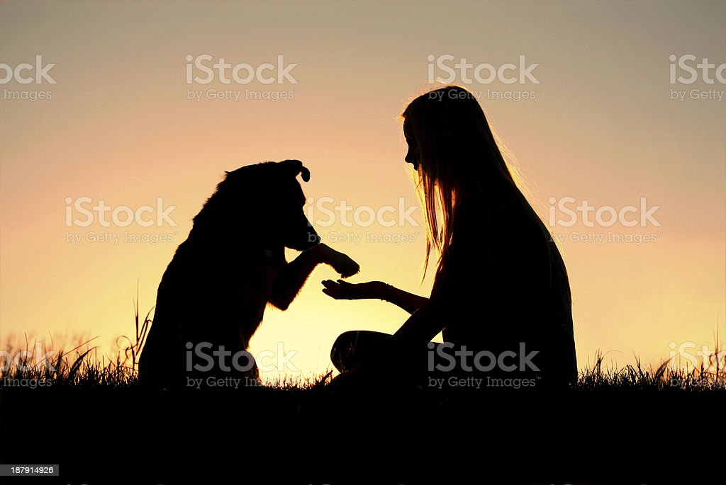 Woman and Her Dog Shaking Hands Silhouette stock photo