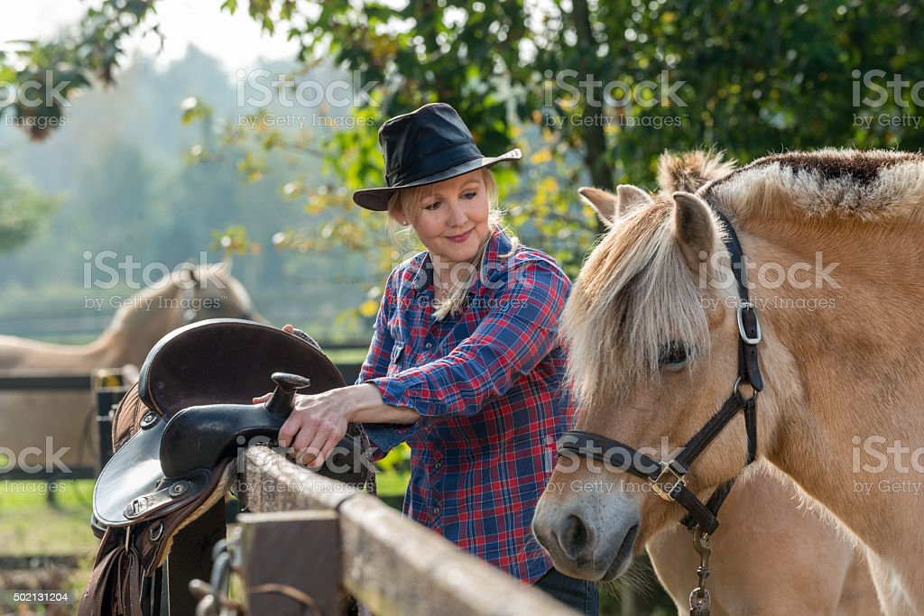Woman and her horses stock photo
