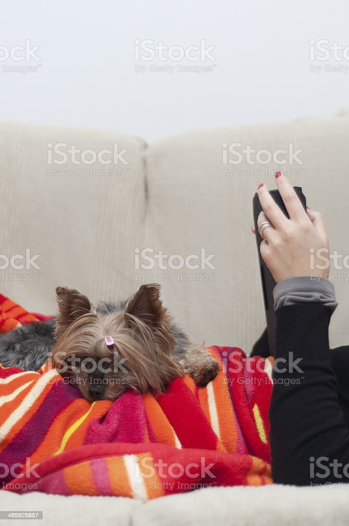 woman and her pet on a couch royalty-free stock photo