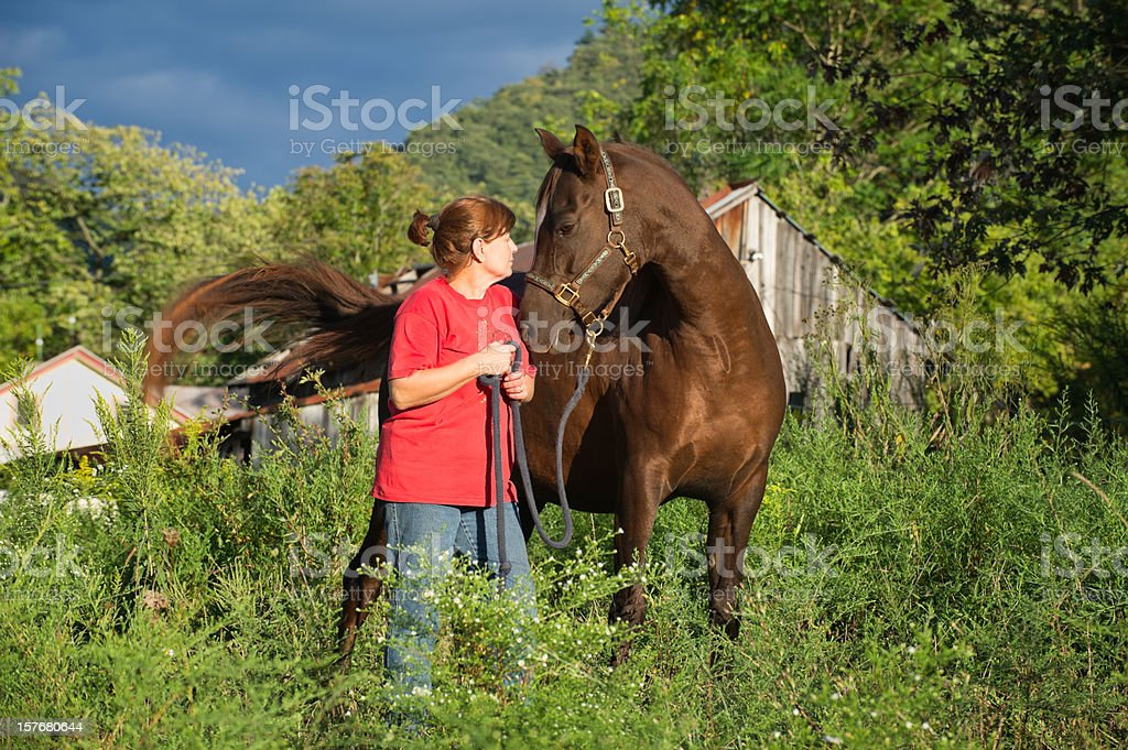 Woman and Horse Looking Eye-to-Eye royalty-free stock photo
