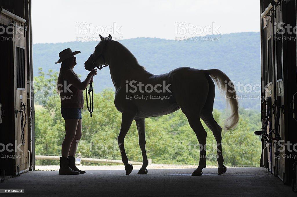 Woman and Horse Silhouette in Open Barn Door, Arabian Stallion stock photo