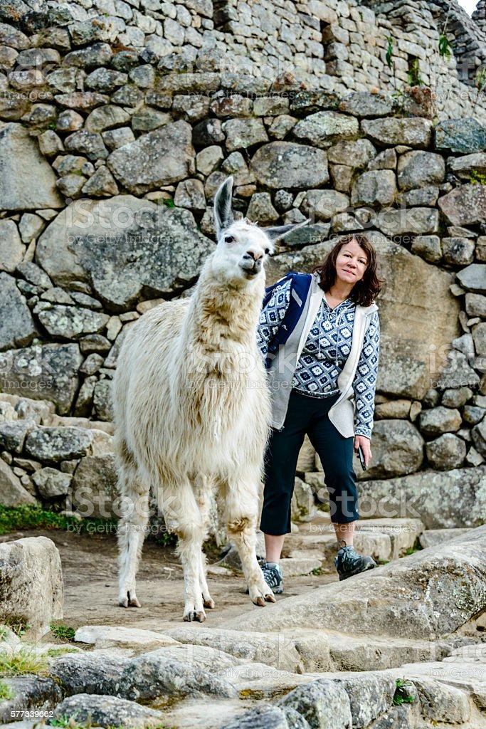 Woman and llama at the Inca ruins of Machu Picchu stock photo