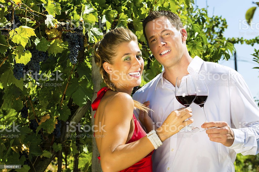 Woman and man standing at vineyard drinking wine royalty-free stock photo