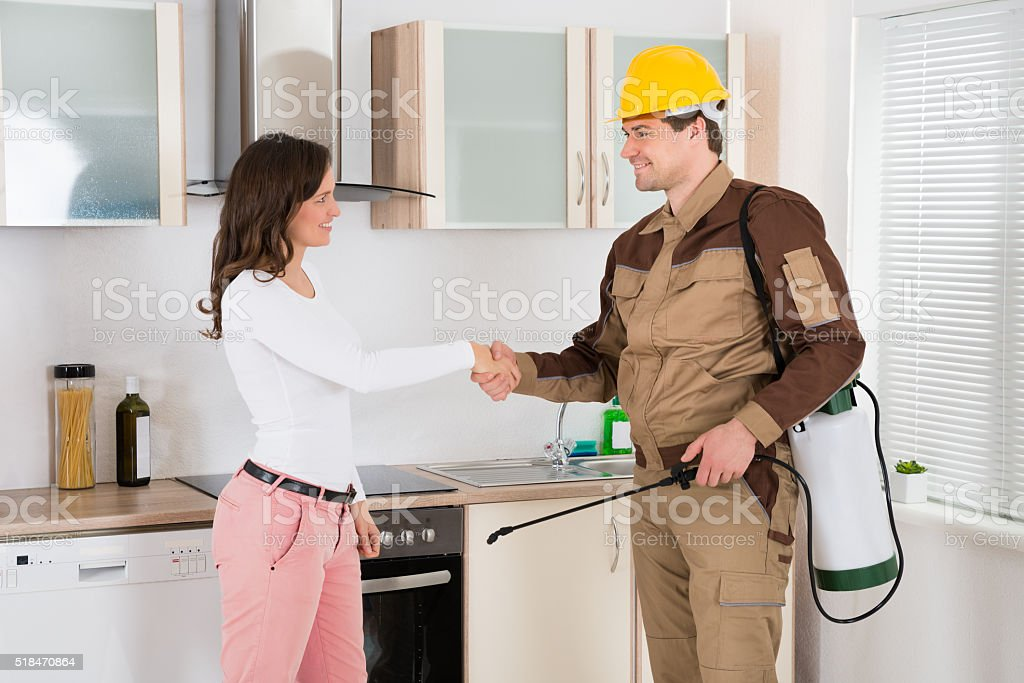 Woman And Pest Control Worker Shaking Hands stock photo